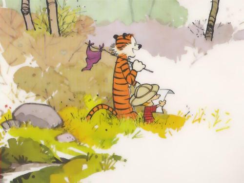 Calvin & Hobbes wallpaper called exploring