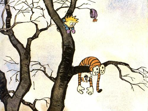 Calvin & Hobbes wallpaper titled fallen in a pohon