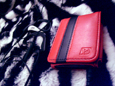 iPod case