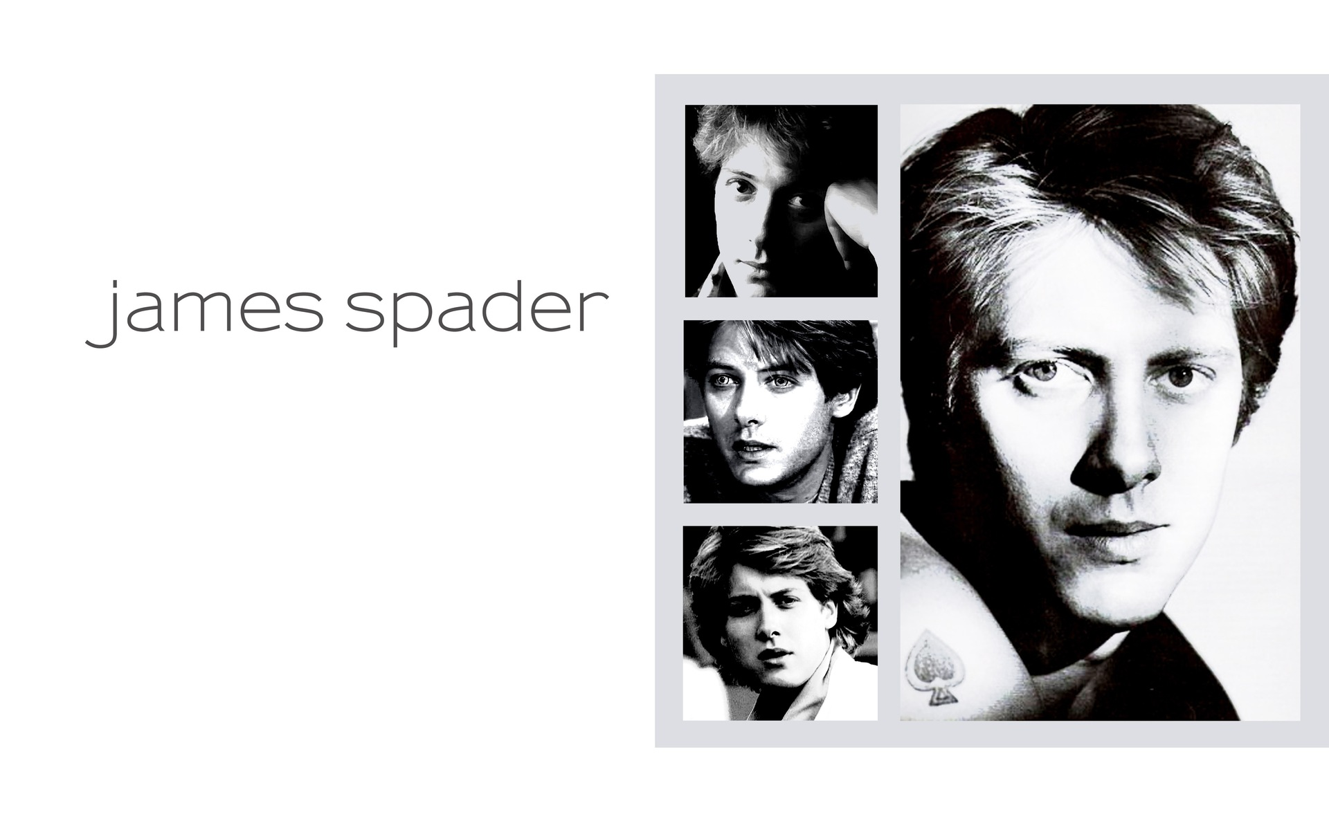 James Spader - Photo Set