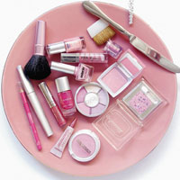 make up box - Pink (Color) Icon (589304) - Fanpop