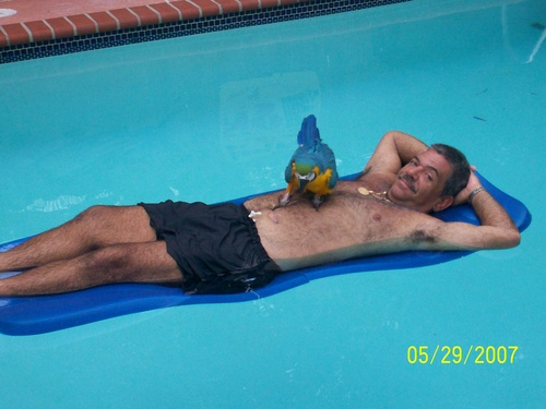 my dad and loro in pool!