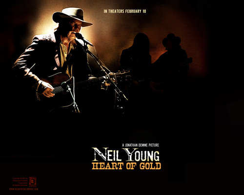 Neil Young wallpaper entitled neil young