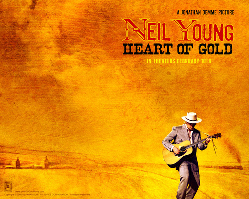 Neil Young 壁紙 titled neil young