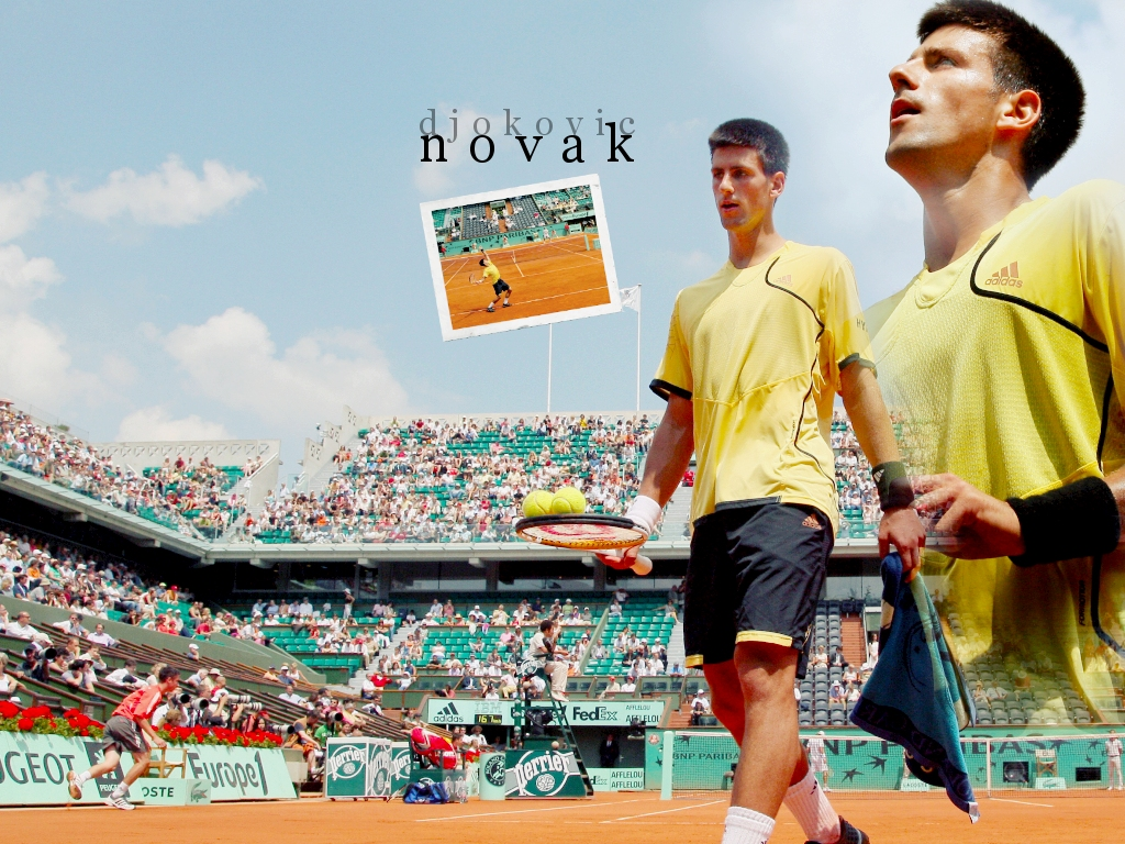 Novak Djokovic Photos Pictures