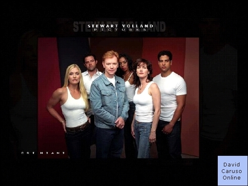 CSI: Miami wallpaper entitled original cast