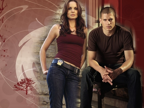 prison break-wallpaper3 - prison-break Wallpaper