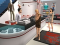 sims 2 fashion stuff - the-sims-2 wallpaper