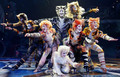 somecats - cats-the-musical photo