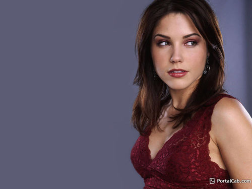 sophia - sophia-bush Wallpaper
