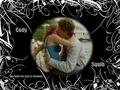 squib and cody<3 - 15-love photo