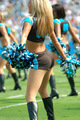 the Side and Back - nfl-cheerleaders photo