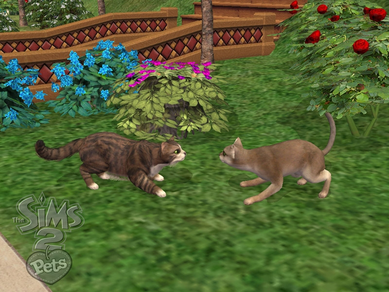 the sims 2 pets - The Sims 2 Photo (161759) - Fanpop