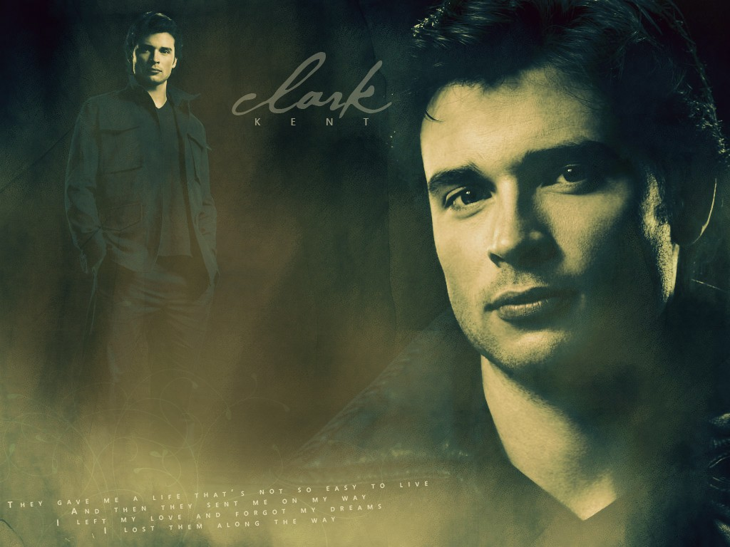 tom - tom-welling wallpaper