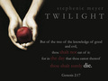 twilight - twilight-series fan art