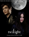 twilight - twilight-series photo
