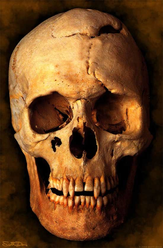 vampire skull - vampires photo