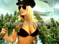 wallpaper..weed babes - marijuana wallpaper