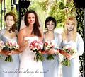 wedding party - twilight-series photo