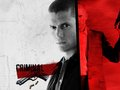 went miller - wentworth-miller wallpaper
