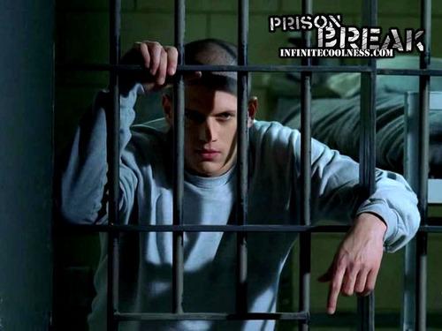 Wentworth Miller Hintergrund called wentworth miller (prison break