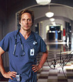 william - william-fichtner photo