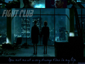 xblakeslady - fight-club wallpaper