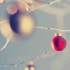 http://images.fanpop.com/images/image_uploads/xmas-icons-christmas-433382_100_100.jpg