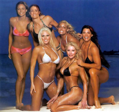 Stacy, Lita, Torrie, Trish, Victoria, & Sable