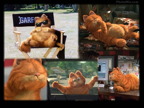 Garfield Movie پیپر وال
