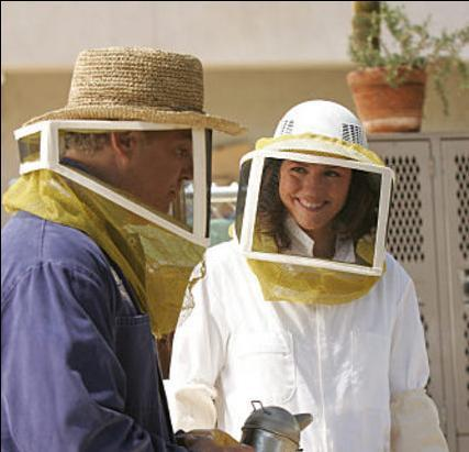 Grissom, Sara and the Bees