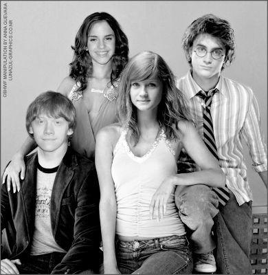 Harry, Ron, Hermione & Ginny