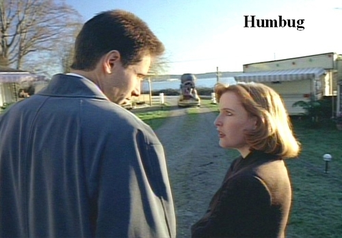 http://images.fanpop.com/images/image_uploads/The-X-Files-the-x-files-78359_500_347.jpg