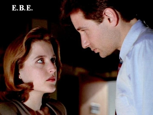 http://images.fanpop.com/images/image_uploads/The-X-Files-the-x-files-78379_500_375.jpg